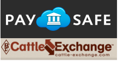 You can now buy cows easily, safely on PaySAFE Escrow