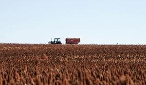 UNL report: Slower economic growth projected for Nebraska