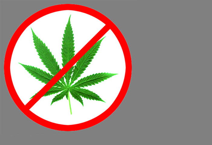 marijuana should be illegal How did marijuana become illegal in the first place  declared that marijuana should not be in schedule i and even doubted its designation as an illicit substance .