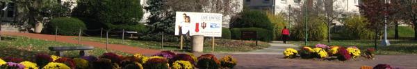 Indiana University seeks own engineering program