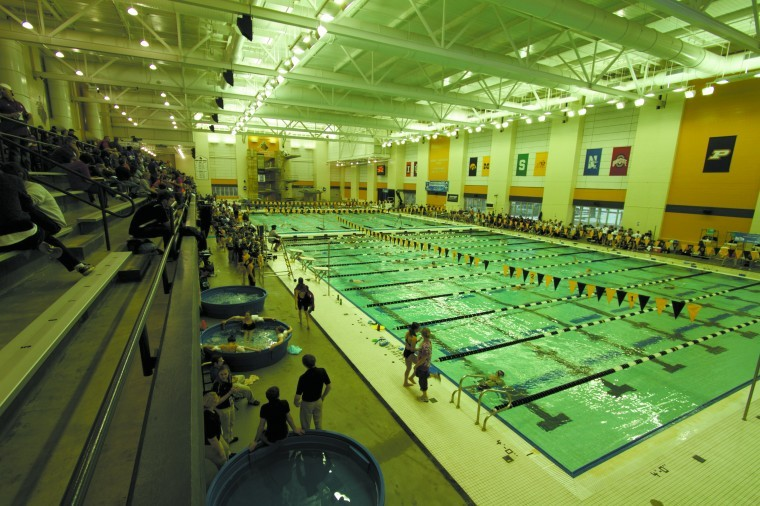 Program 39 S Success Expands In A Decade Swimming And Diving