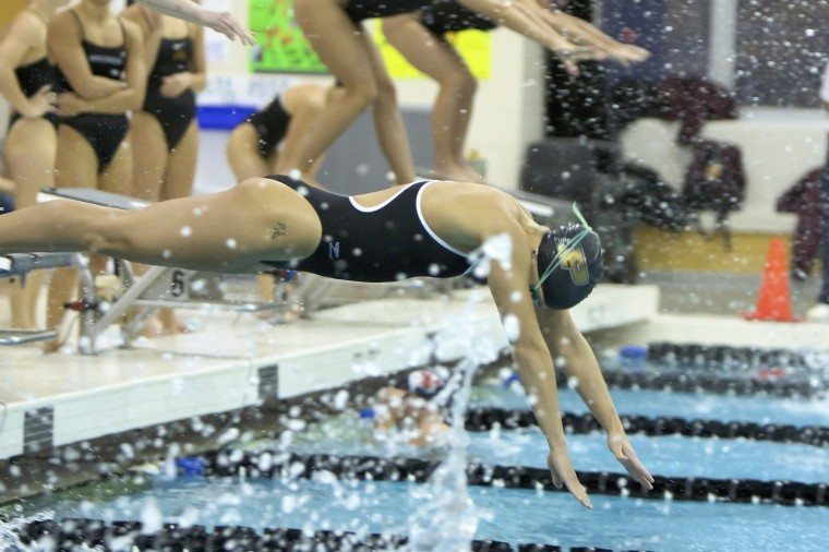 Swim And Dive Preview Multimedia