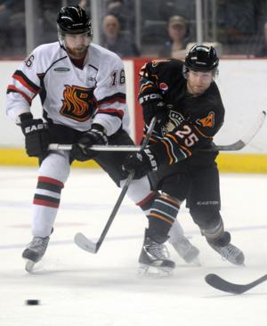 Mallards' Hellyer hoping for successful `homecoming'