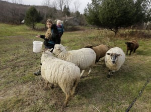 Programs match fledgling farmers, landowners