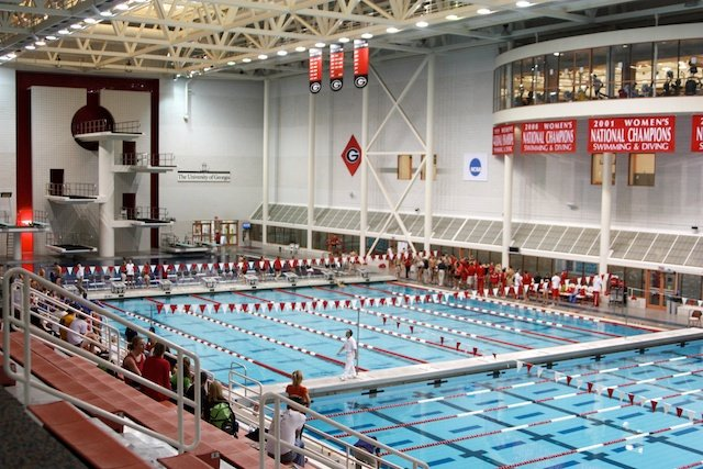 Photo Gallery Uga Vs Fl Swim And Dive Meet Gallery