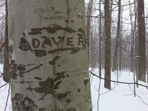 Dave was here