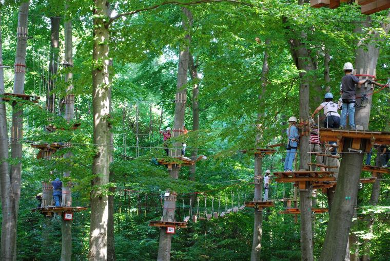 Metro Richmond Zoo Building Treetop Adventure Park Richmond Times Dispatch Chesterfield