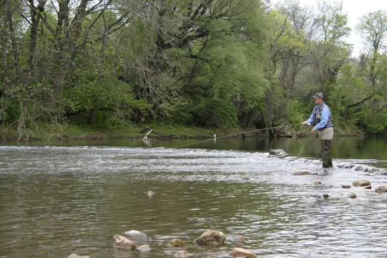 Fly fishing festival leaves waynesboro richmond times for Fishing in richmond va