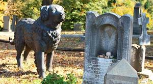 Where Am I RVA? Black Dog in Hollywood Cemetery