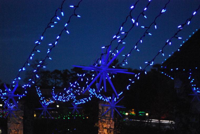 GardenFest of Lights 2013