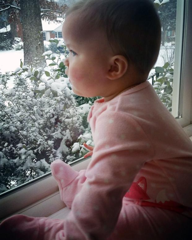 7 month old Brooklynn from Henrico enjoying this snowy day from the inside