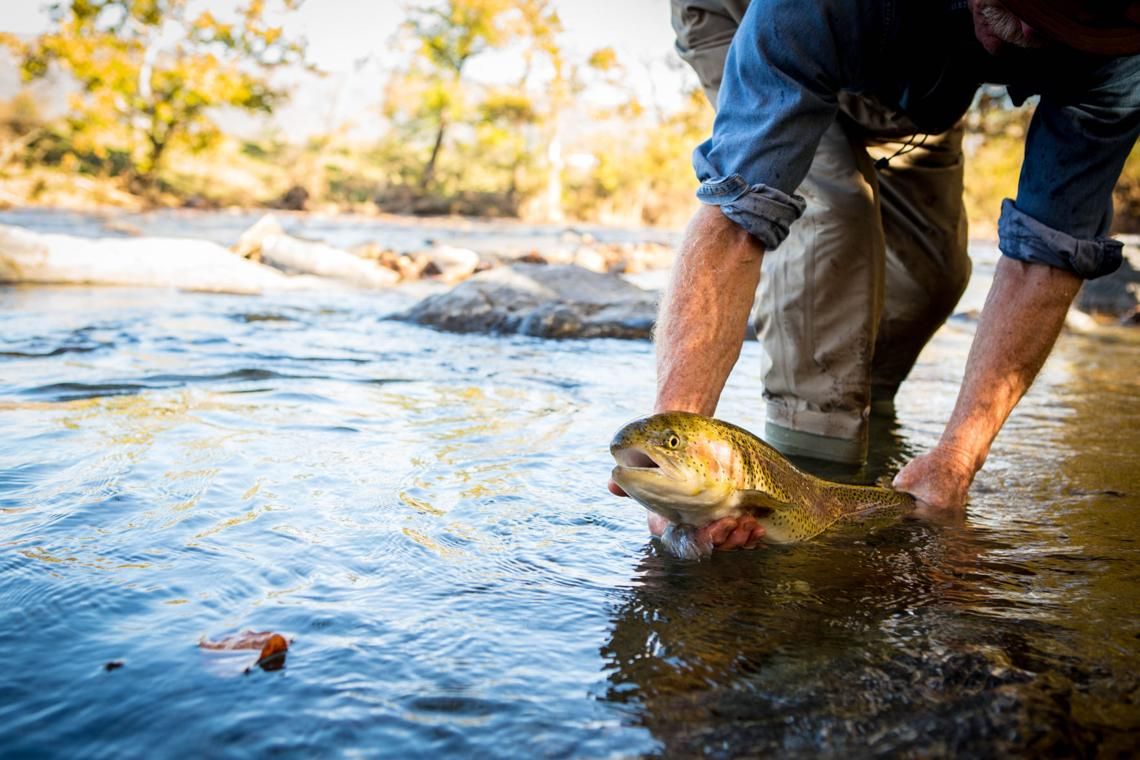 Bill cochran changes coming to the trout program for Va game and fish
