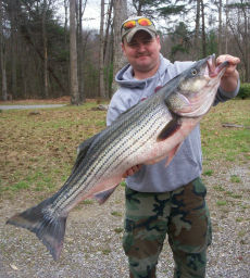 Mark taylor 39 s fishing report outdoors for Virginia saltwater fishing report