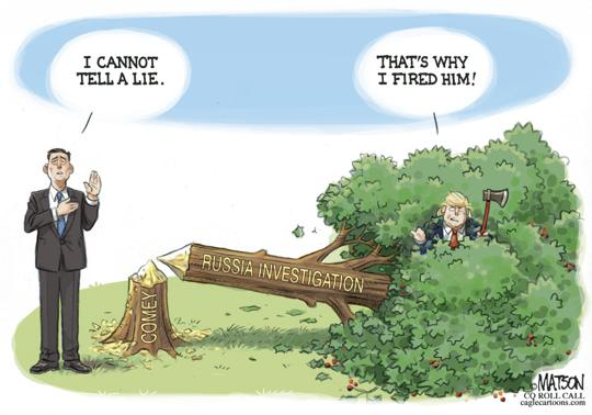 James Comey next to fallen tree labeled