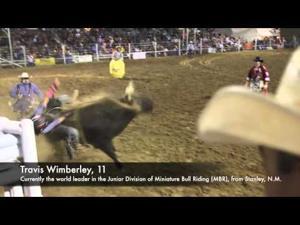 Video: Miniature Bull Riding at the Santa Fe Rodeo