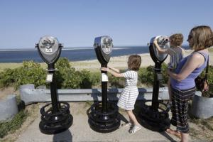 Shark sightings off Cape Cod a boon for tourism