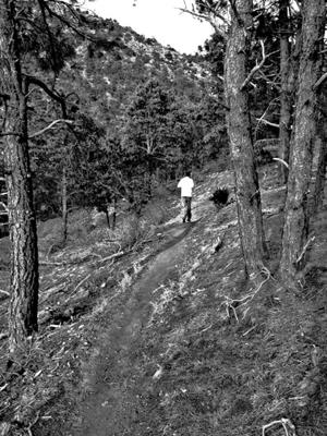 Spring thaw has trail runners seeking higher ground