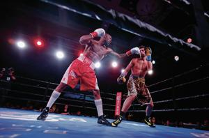 Northern New Mexico fighters fare well