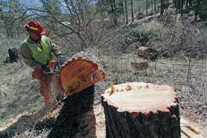 State's Returning Heroes program put vets to work protecting watershed and fighting wildfires