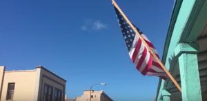 Video: Veterans Day Parade 2015