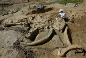 Family discovers rare intact mammoth skeleton