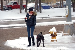 Schools, offices close as snow blankets Santa Fe area