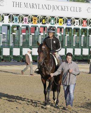 Derby winner Nyquist ready for Preakness, even a rainy one