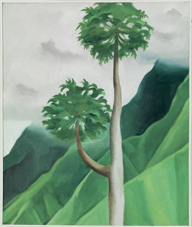 Papaya Tree – 'Iao Valley – Maui