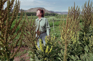 After 20 years, Marsha Mason will bid farewell to Abiquiú farm