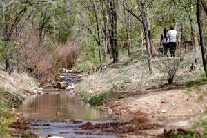 Slow-water 'pulse' brings a steady trickle of water down Santa Fe River
