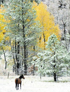 Winter harbinger brings mountain snow
