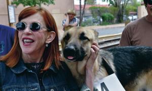 German shepherd takes top honor in Rin Tin Tin look-alike contest