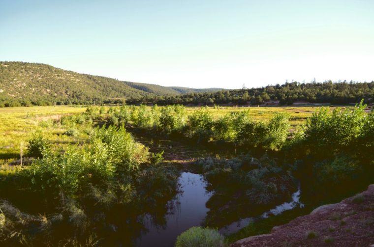 rivers2