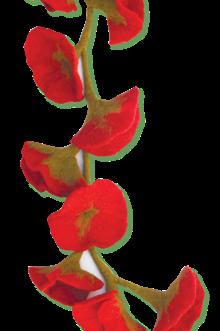 Rocki Gorman, Felted flower scarves