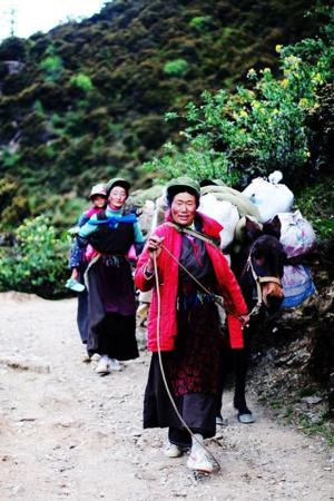 Ancient gene aids Tibetans with high altitude
