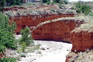 Land managers of burned-out areas prepare for monsoon season