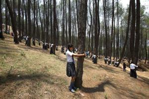 Thousands in Nepal hug trees in world record bid