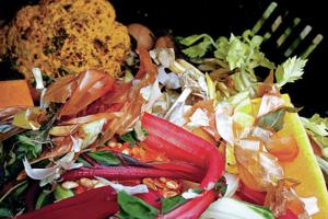 Nonprofit has high hopes for composting in Santa Fe
