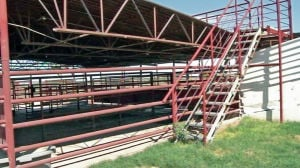 Judge delays ruling on AG's suit against horse-slaughter plant