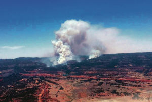 Navajo Nation wildfire threatens homes, livestock