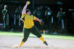 Eight area players picked for all-star softball games