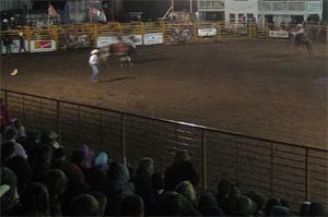 Rodeo bucks its way into Hemingway