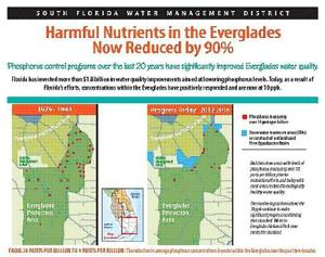 Improved Water Quality in the Everglades