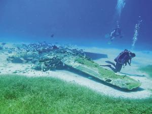 Divers investigate seagrass surrounding the plane of Walter Wyatt