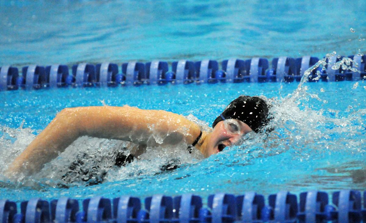 Big Day For All Falcons At Section Swim Prelims Sports