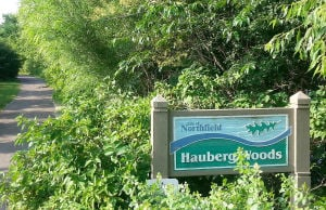 Hauberg Woods Park one of Northfield's hidden gems