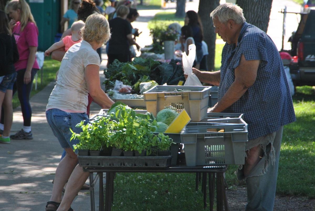 gallery northfield farmers market a hit on sunny saturday news calvin pflaum who was selling fresh produce fills a bag for a customer on saturday during the northfield farmers market brad phenow northfield news