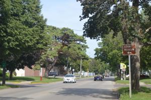 Elm Avenue