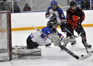 Waseca girls have no answer for St. Louis Park's Basill in 4-1 loss