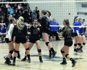Falcons volleyball